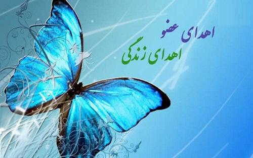 دوازدهمین اهدا عضو استان بوشهر در سال جاری