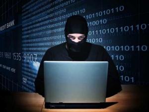 انهدام باند کلاهبرداران میلیاردی فروش گردو اینترنتی در دشتستان