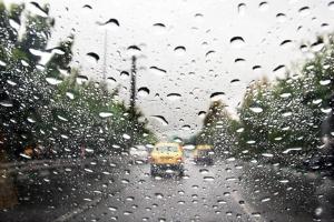 بوشهر بارانی میشود