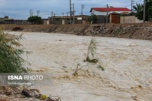 خسارات بارندگی و سیل در استان بوشهر